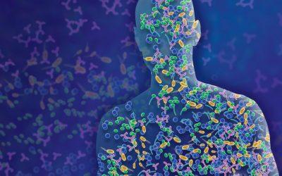 Metagenómica y Alzhéimer