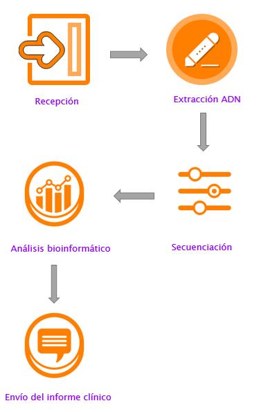 Gráfico Metagenómica y Alzhéimer