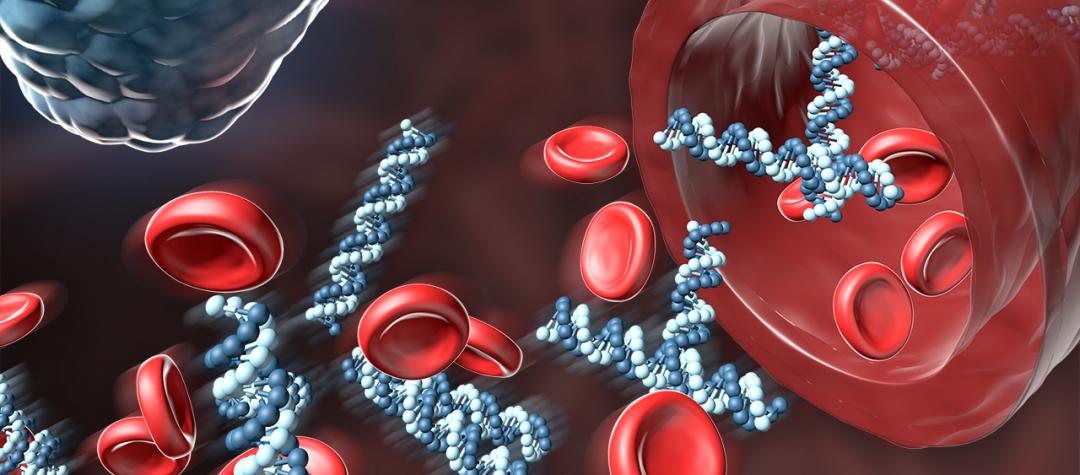 El ADN Circulante y sus aplicaciones clínicas