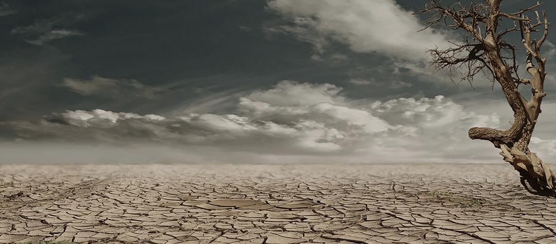 Cambio climático y Globalización: el pasaporte de los patógenos