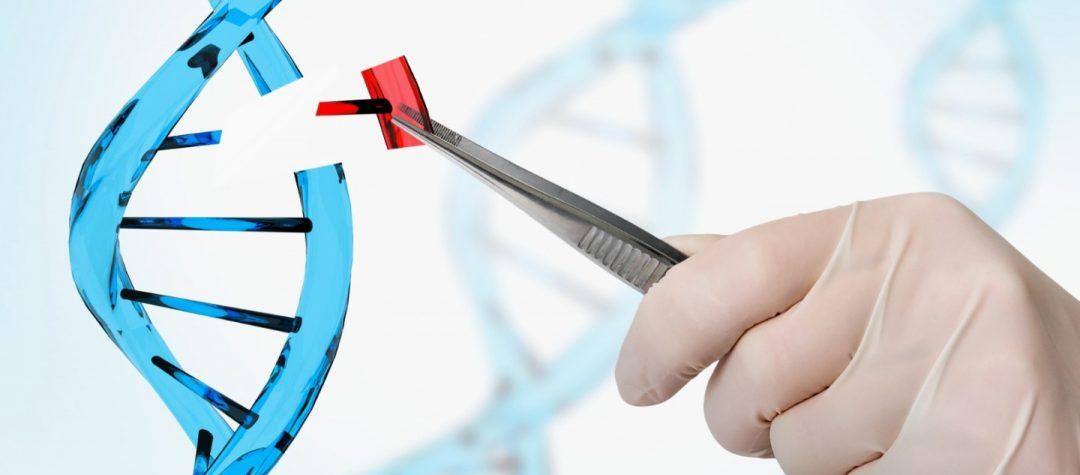CRISPR cas9 y Prime Editing: Presente y futuro de la edición genética