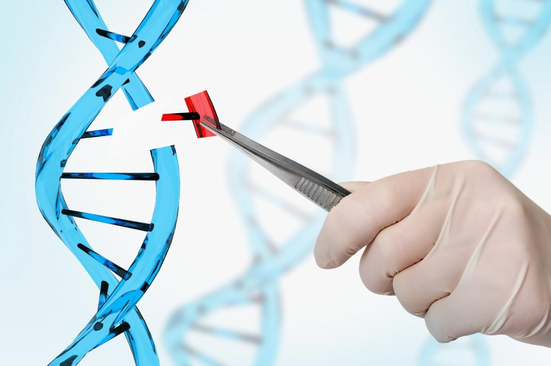 https://www.rafer.es/innovacion-laboratorio-clinico/wp-content/uploads/2019/11/CRISPR-cas9.jpg