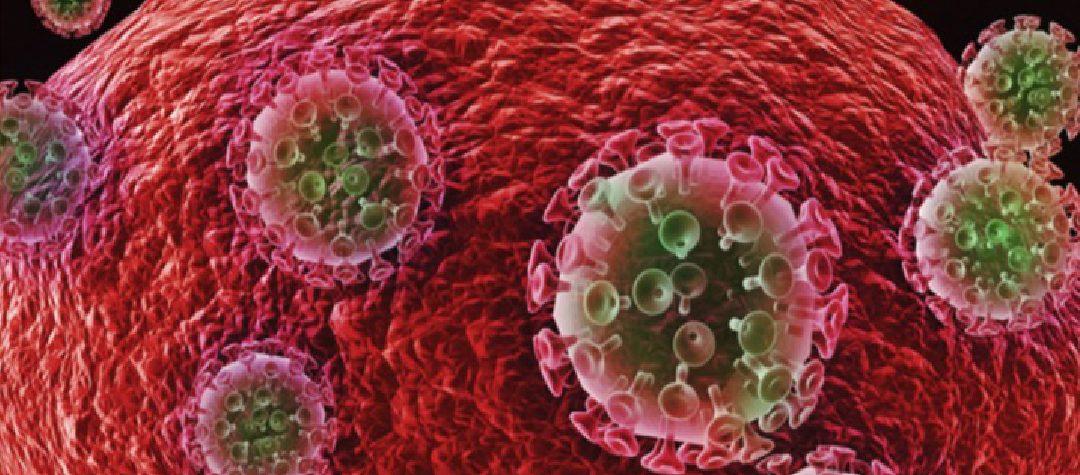 Efecto protector de linfocitos T HLA-B27/B57 CD8+ frente a la infección por HIV