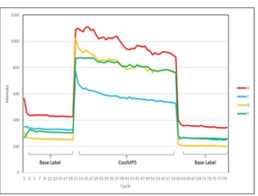 Ciclo CoolMPS™  - Intensidad de Señal