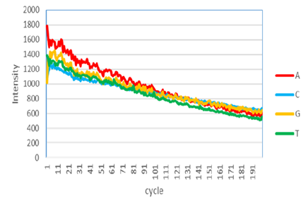 Ciclo-Intensidad MPS