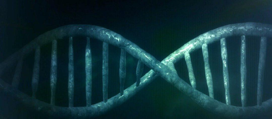 Secuenciación WES para identificar genes asociados al autismo