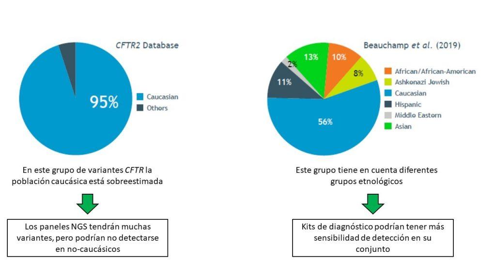 La base CFTR2 tiene menos en cuenta a poblaciones no caucásicas (5%) que la base generada por el estudio Beauchamp (44%)