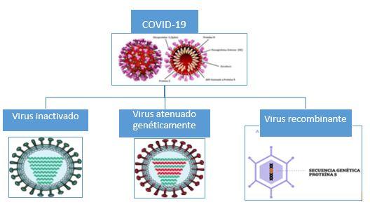 tipos de virus covid-19: inactivado atenuado recombinante
