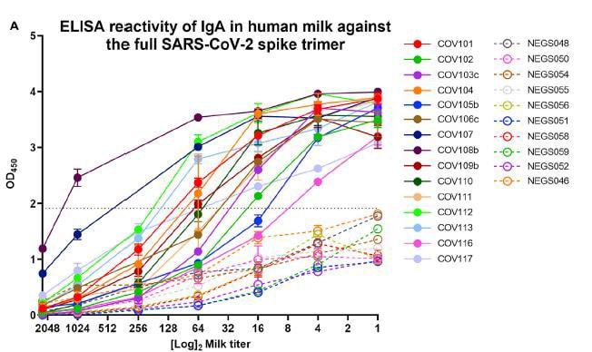 transmisión vertical ELISA reactividad en leche materna con sars cov 2