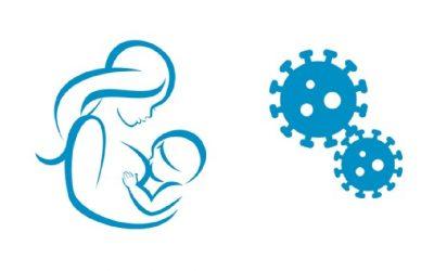Transmisión vertical del SARS-CoV-2 y papel protector de la leche materna durante la COVID-19