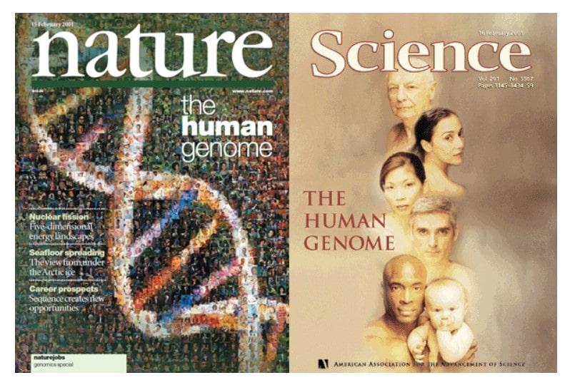 Genoma Humano: Portadas de la revista Nature y Science publicadas en febrero de 2001