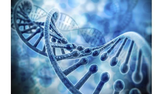 Síndromes hereditarios y metabólicos