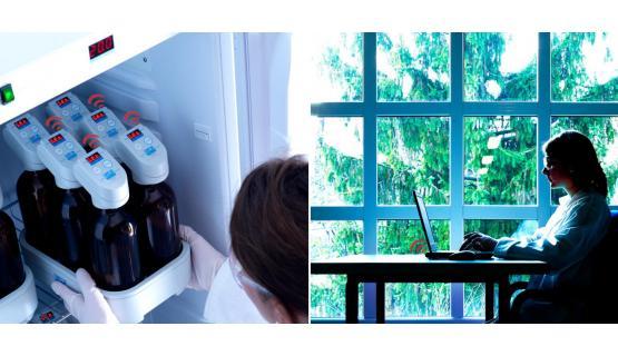 DBO y respirometría