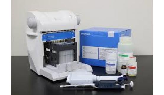 Extracción manual ácidos nucleicos