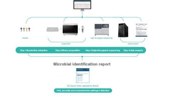 MGI - Solución Total Metagenómica