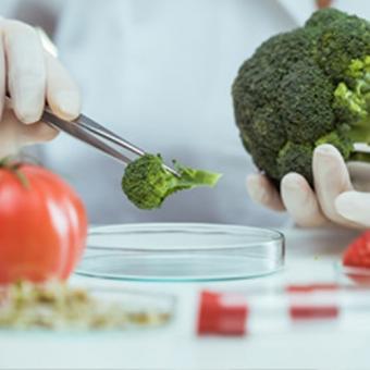 Imagen laboratorio alimenticio title=